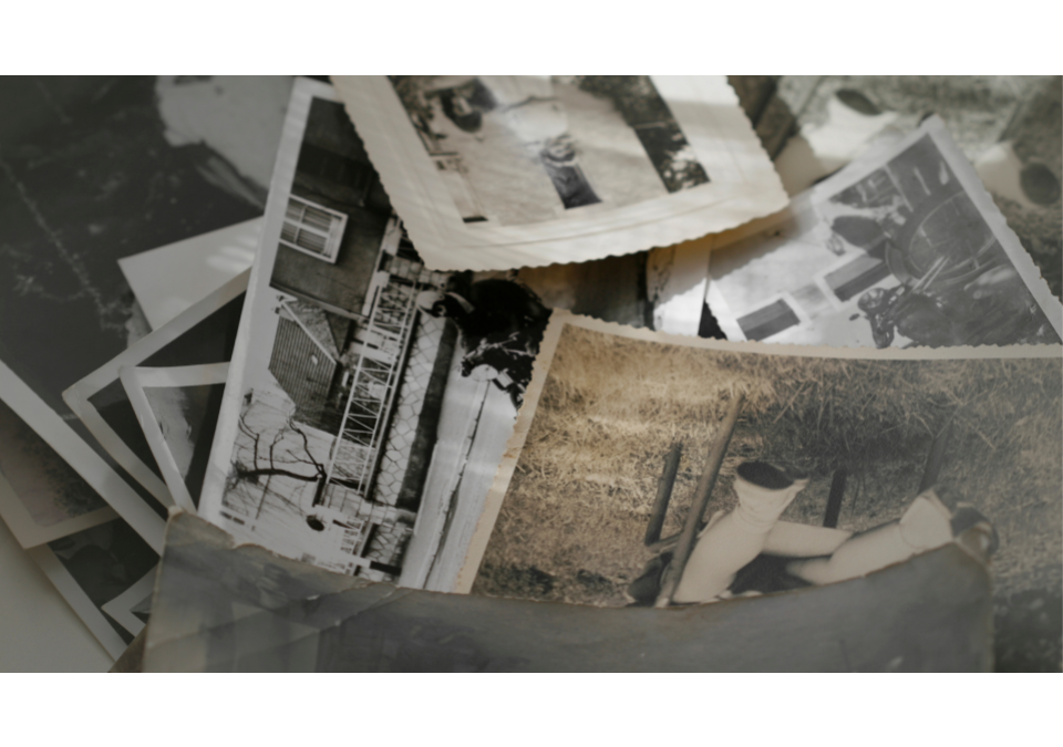 Can You Restore Old, Damaged Photos?